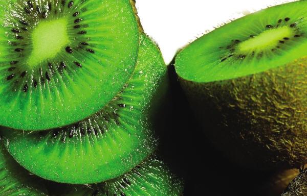 vegetable025.jpg